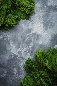 Tavolo di superficie vecchio cemento chiaro ramo di tuia di superficie di natale