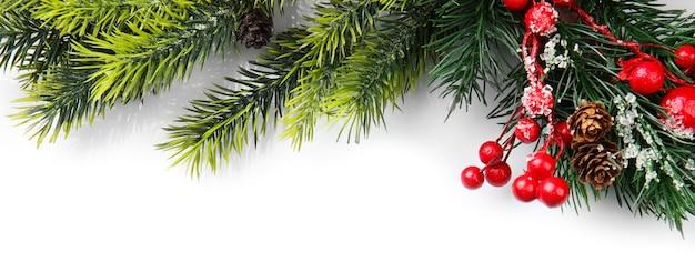 Ramo di albero di natale con bacche rosse su sfondo bianco