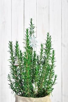 Albero di natale, concetto di cespuglio di rosmarino decorato su un tavolo di legno.