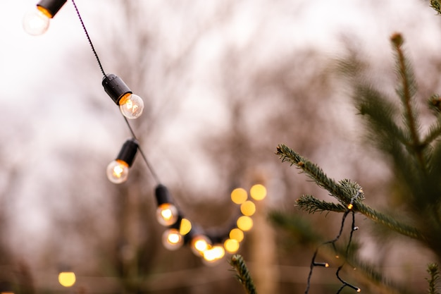 Strada invernale di natale con albero e illuminazione festiva del bokeh