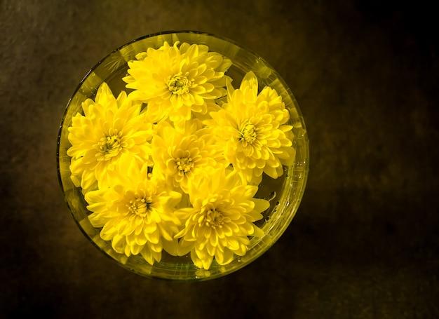 Fiori di crisantemo che galleggiano nell'acqua in vaso, margherita dorata