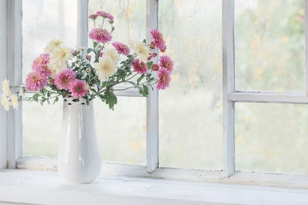 Crisantemi in vaso sul davanzale della finestra in autunno