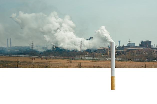 Una sigaretta sullo sfondo della pianta. inquinamento ambientale. il fumo danneggia l'ambiente. ecologia e fumo. posto per il testo.
