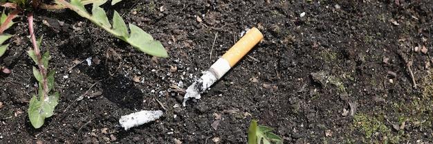 Mozzicone di sigaretta sdraiato a terra e primo piano dell'erba