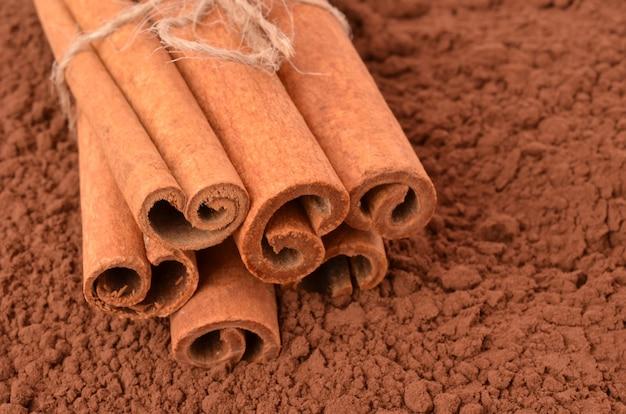 Cannella sul primo piano del cacao