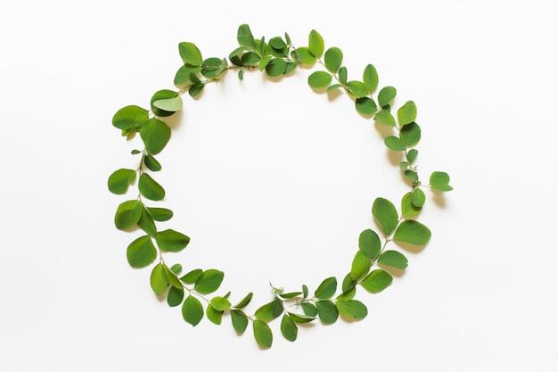 Corona circolare con foglie di piante verdi