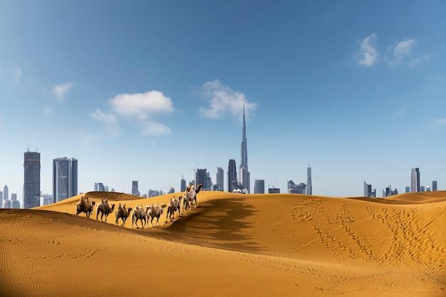 Città di dubai nel deserto