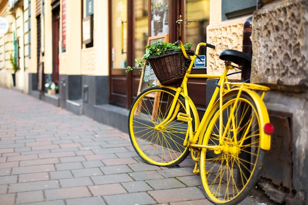 Paesaggio urbano della vecchia accogliente città europea. un vaso di fiori da una vecchia bicicletta.