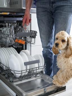 Piatti puliti in lavastoviglie in cucina. dopo il lavaggio.