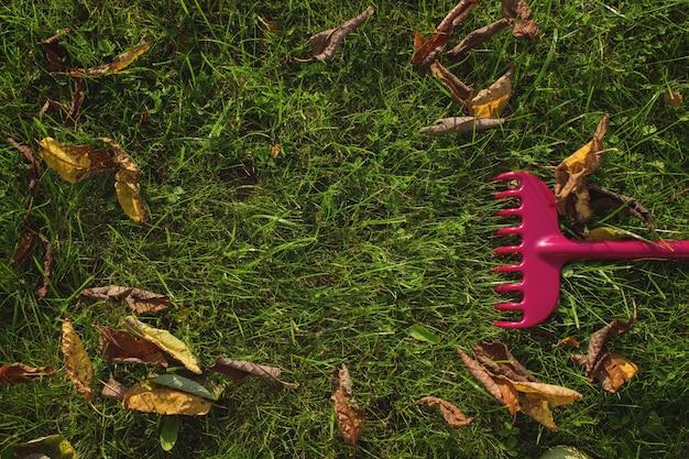Pulizia delle foglie autunnali in giardino. rastrello su un bastone di legno e fogliame autunnale colorato