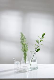 Acqua limpida in fiaschetta e fiala di vetro con congedo verde naturale in background di laboratorio di scienze biotecnologiche