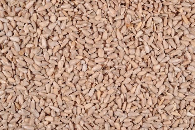 Sfondo di semi di girasole cancellato