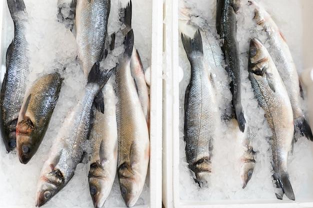 Clese up di pesce congelato sullo scaffale del supermercato