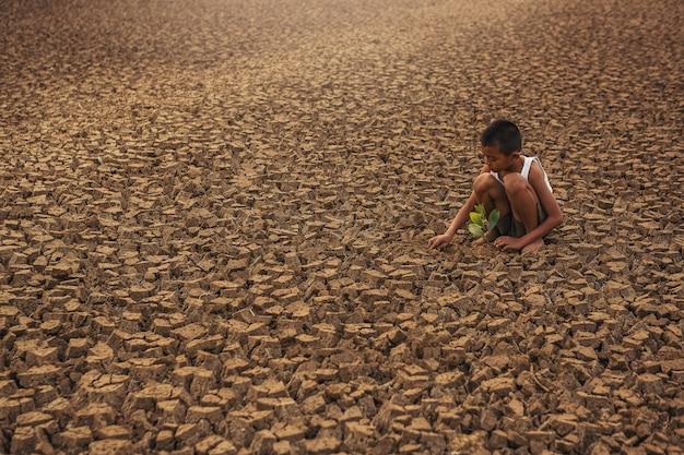 Cambiamento climatico mani dei bambini che piantano albero su terra secca incrinata conservazione dell'ambiente e fermare il concetto di riscaldamento globale