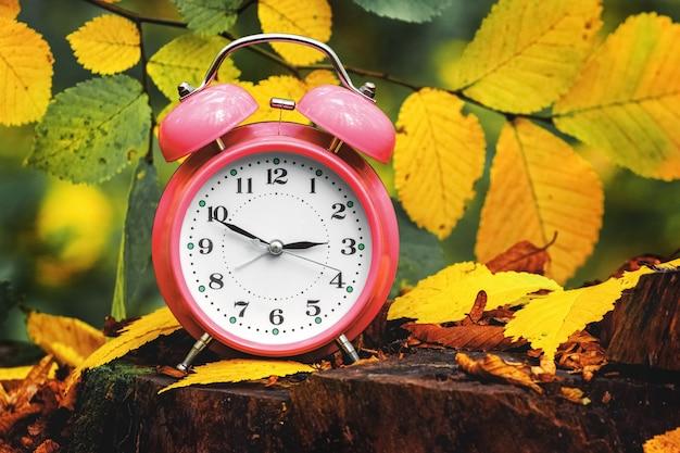 Orologio, sveglia nella foresta autunnale su un ceppo tra foglie colorate