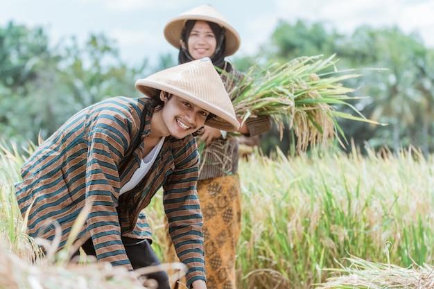 Primo piano di agricoltori asiatici che sorridono mentre legano piante di riso e portano i loro raccolti contro il campo di riso