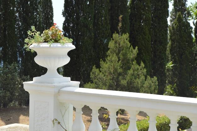 Primo piano della balaustra con vaso di fiori nel parco sullo sfondo di alberi