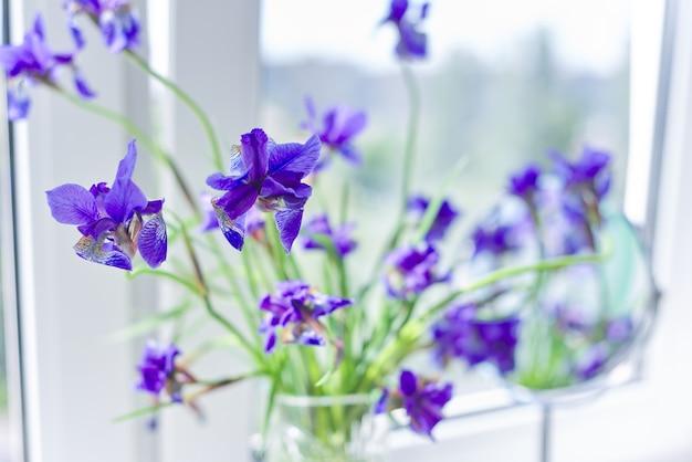 Primo piano di bellissime iridi viola blu in un vaso sulla finestra