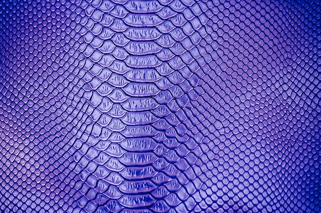 Chiuda su di uso di lusso blu di struttura della pelle di serpente per fondo