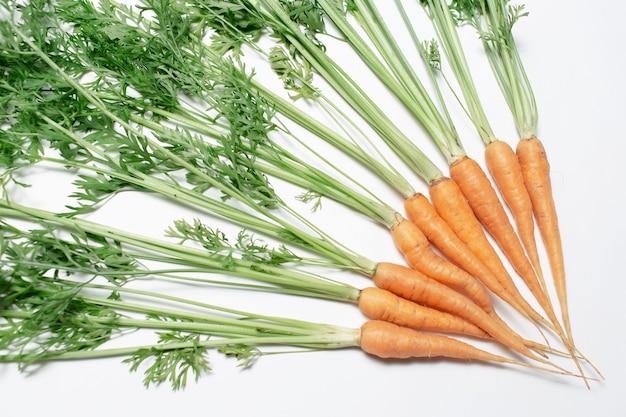 Primo piano del mazzo di piccole carote fresche su fondo bianco.