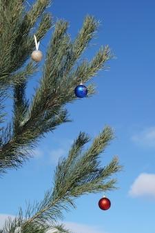 Primo piano albero di natale e palla