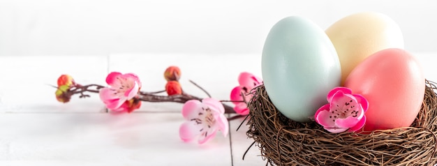 Close up di colorate uova di pasqua nel nido con prugna rosa fiore su bianco brillante tavolo in legno sfondo.