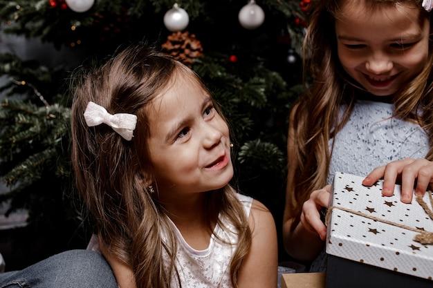 Ritratto di vista ritagliata del primo piano delle sorelle belle ragazze allegre allegre attraenti che trascorrono le vacanze di natale e le ragazze si scambiano i regali in appartamento interno al coperto