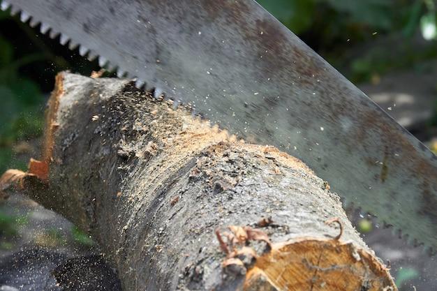 Sega a taglio trasversale ravvicinata che taglia un ceppo di albero. concetto di falegnameria vecchia sega arrugginita.