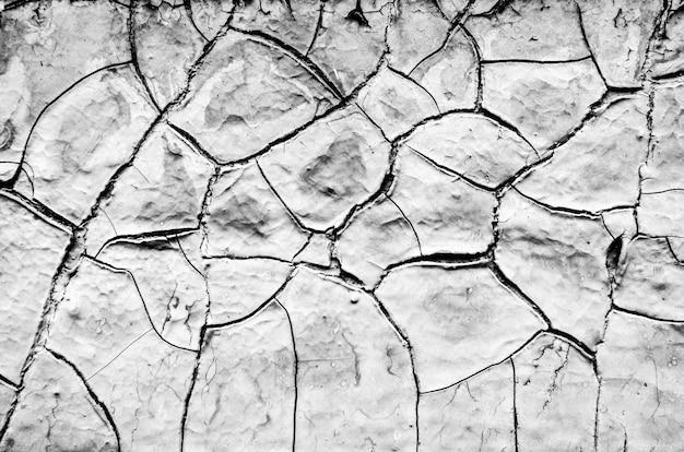 Dettaglio del primo piano di pittura incrinata sulla parete. bianco e nero. frammento di una superficie del muro con vernice di rivestimento vernice screpolata