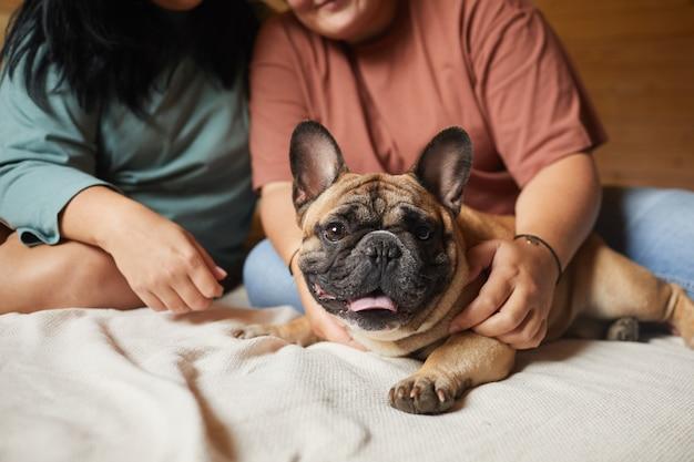 Primo piano del cane domestico sdraiato sul letto mentre i proprietari lo accarezzano