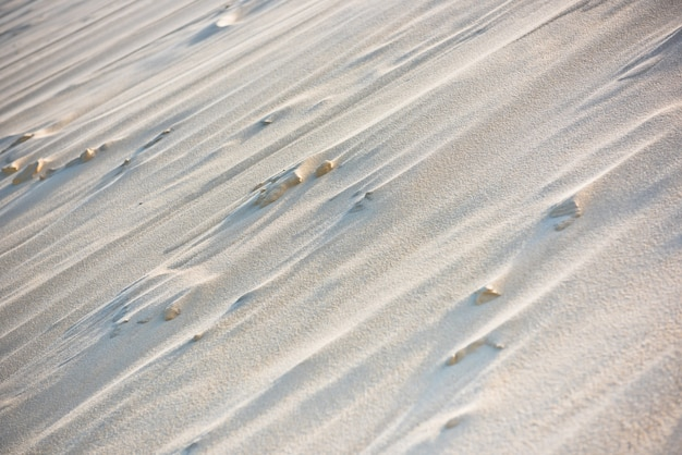 Primo piano della duna di pyla, la duna più alta d'europa
