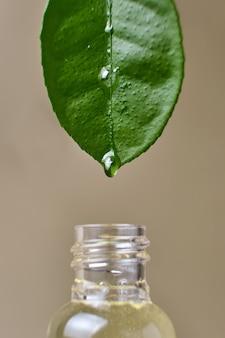Primo piano di olio essenziale che gocciola dalla foglia naturale fresca in una bottiglia di vetro su fondo beige beige