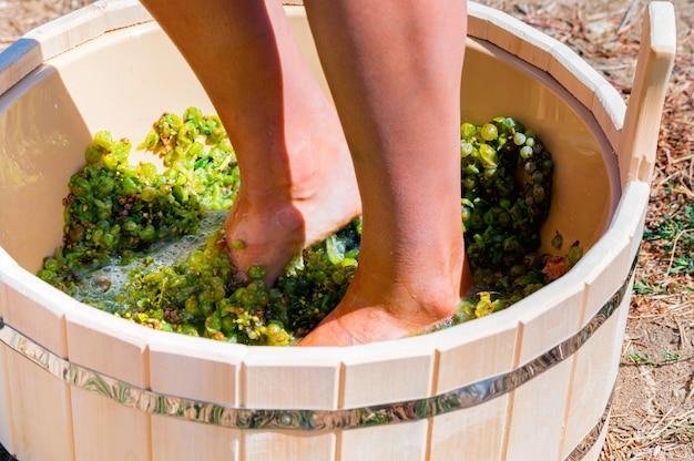 Primo piano di piedini femminili schiacciare l'uva in una vasca di legno