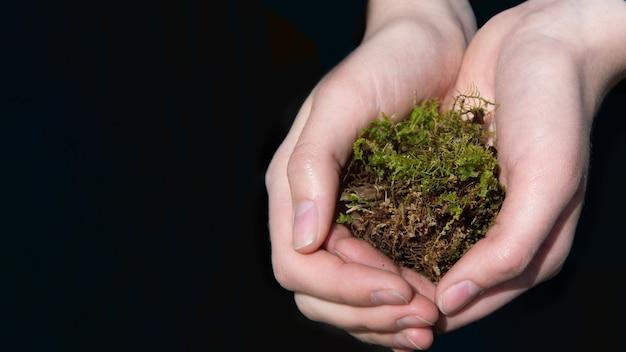 Mani femminili del primo piano che tengono un pezzo di muschio su uno sfondo scuro. concetto di cura ambientale