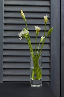 Fiori ramson bianchi fragili del primo piano in bicchiere di vino