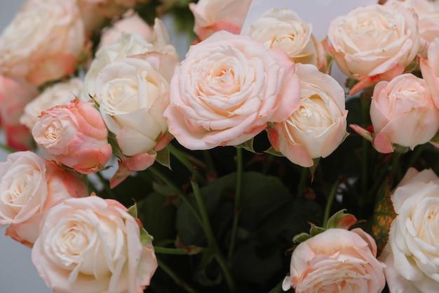 Chiuda in su di bei fiori freschi delle rose dentellare. festa della donna e san valentino.