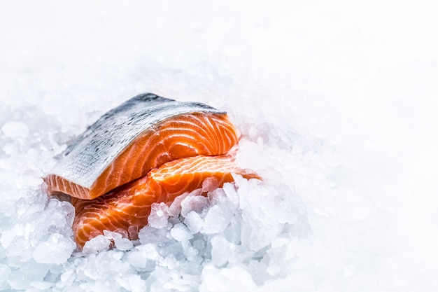 Close-up filetti di salmone crudo fresco su ghiaccio.