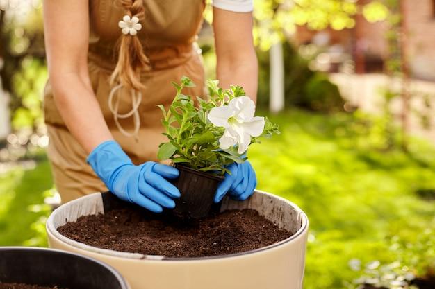 Primo piano dei fiori di trapianto della mano di una ragazza nel giardino.