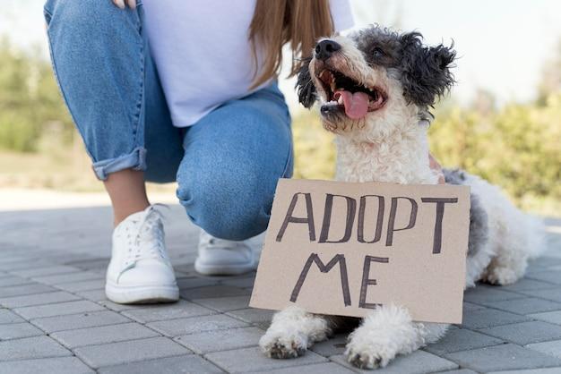 Ragazza del primo piano con il cane di adozione