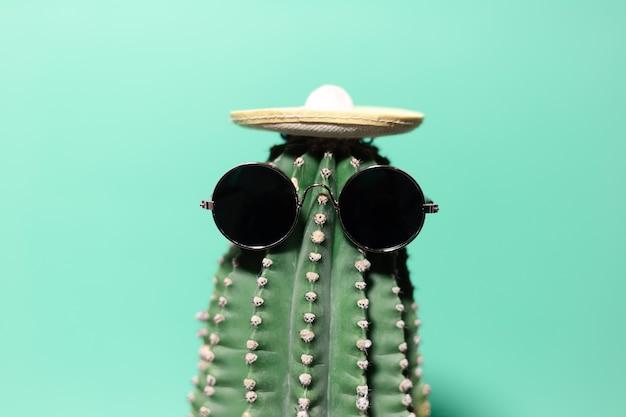 Close-up cactus verde con cappello messicano e occhiali da sole, isolato sulla parete di colore aqua menthe.