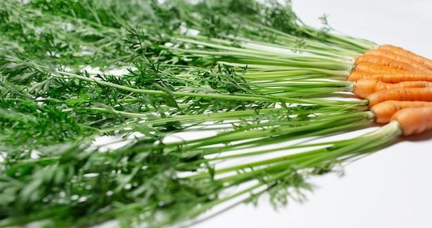 Close-up di carote verdi cime su sfondo bianco.