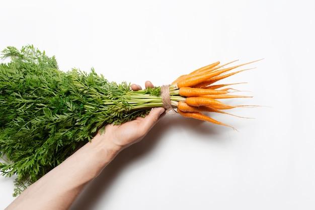 Primo piano della mano che tiene mazzo di carote isolato su bianco.