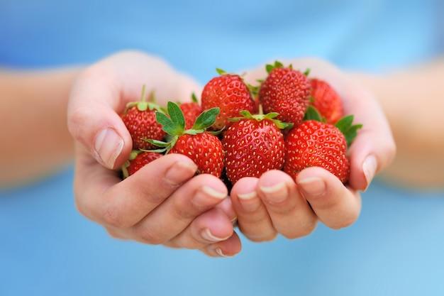 Mani del primo piano che tengono le fragole fresche