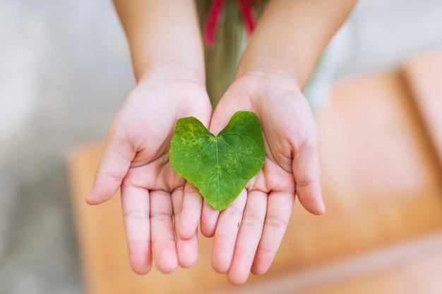 Chiuda in su della foglia dell'edera verde di figura del cuore in mano del bambino