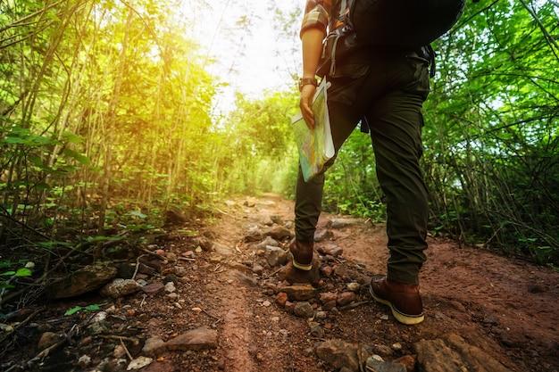 Chiuda sull'escursione dell'uomo con gli stivali di trekking che cammina nella foresta