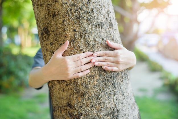 Chiuda sulla mano umana sta abbracciando l'albero