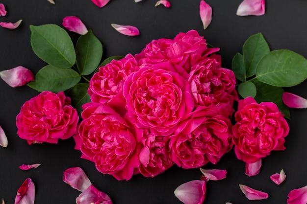 Chiuda sull'immagine delle rose rosa su fondo nero