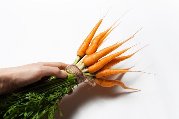 Primo piano della mano maschio che tiene mazzo di carote di freschezza su fondo bianco.