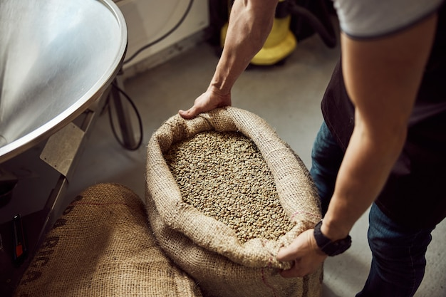 Primo piano delle mani dei lavoratori maschi che tengono la borsa aperta con chicchi di caffè verde in deposito