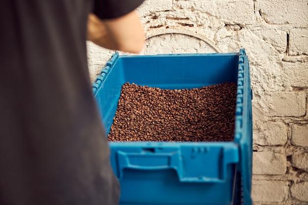 Primo piano di un torrefattore che lavora in magazzino con chicchi di caffè tostati marroni nel contenitore di stoccaggio